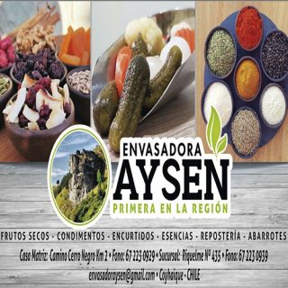 ENVASADORA 500X500